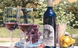 同种不同命:论白葡萄酒和红葡萄酒的区别