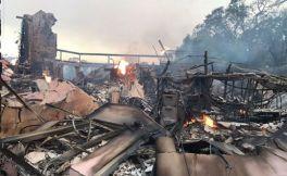 经历加州森林大火后,辛格罗酒庄开始重建之路