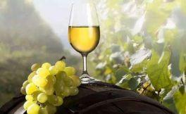 最完美的白葡萄酒--白诗南葡萄酒