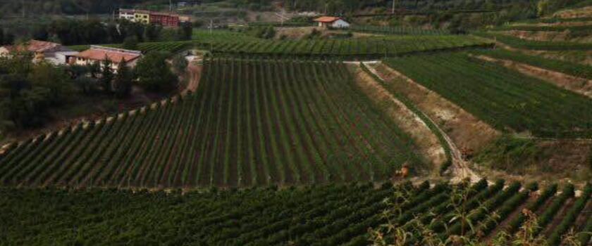 威尼托(Veneto)