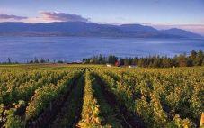 加拿大不列颠哥伦比亚(British Columbia)