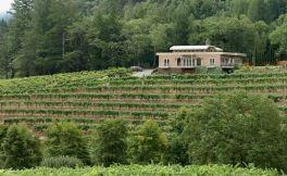 钻石溪酒庄(Diamond Creek Vineyards)