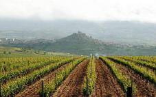 拉里奥哈娜酒庄(La Riojana)