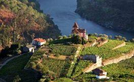2018年值得一去的七大葡萄酒旅游胜地