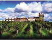 利丰庄园(Chateau Larrivaux)
