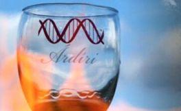 阿尔迪里酒庄(Adiri Winery)