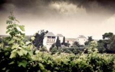 纳格利酒庄(Chateau La Negly)