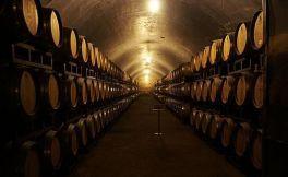 浅谈葡萄酒文化史