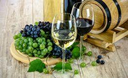 怡园精选霞多丽干白葡萄酒怎么样?
