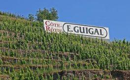 法国葡萄酒产区罗讷河谷的葡萄酒份额急剧上升