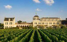 蒙德维尔酒庄(Chateau Montviel)