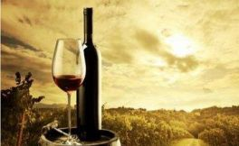 李作福打造通化葡萄酒商城,布局互联网+葡萄酒产业