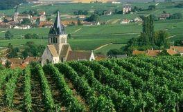 法国的经典产区葡萄酒介绍