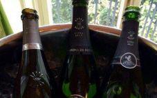 罗斯柴尔德香槟将在今年推出桃红顶级香槟