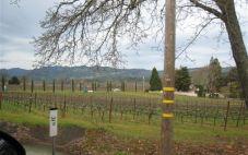 纳帕谷Hornberger葡萄园以570万美元的价格出售