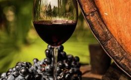 法国总统马克龙自曝每天喝两次红酒