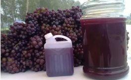喝自酿葡萄酒比喝假葡萄酒更要命?