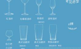 您用对杯子了吗?一张图认识各种常见酒杯