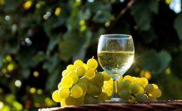 现在加盟葡萄酒行业,真的可以赚钱吗?