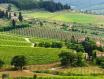 意大利警方查获一起意大利基安蒂假酒案,涉案金额高达2亿欧元