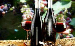 怎么爱上葡萄酒?分享下心路历程
