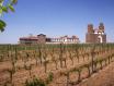 CMB主席表示中国是最具有活力的葡萄酒市场