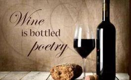 葡萄酒塞其实可以做成小动物
