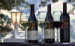 周立波和葡萄酒有哪些关系?