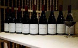 特殊的葡萄酒香气有哪些?