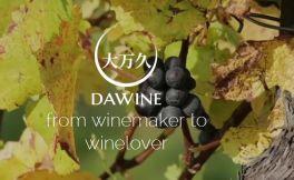 为了应对假酒难题,澳洲葡萄酒供应商联合中国软件开发商推出区块链