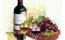 阿根廷葡萄酒产区 阿根廷葡萄酒怎么样