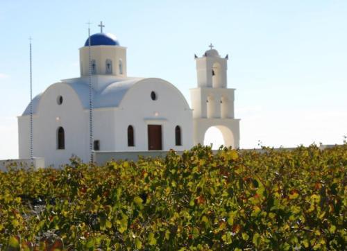希腊葡萄酒文化是怎样的?