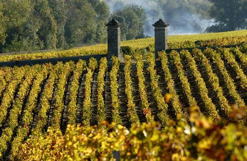 上梅多克葡萄酒的产区是怎样的?