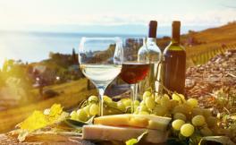 阿根廷重要的葡萄酒产区你知道吗?