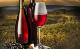 如何赏美景饮美酒 教你5站玩转罗讷河谷葡萄酒产区