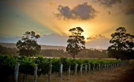 澳洲葡萄酒产区 远离城市的玛格丽特河产区