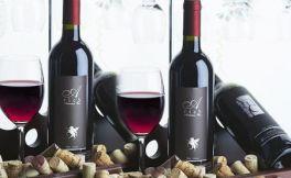 波尔多和葡萄牙不同的酿酒葡萄品种对比