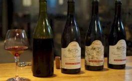 """组成""""波尔多式混酿""""的葡萄品种有哪些"""