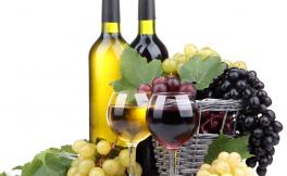 如何看待匈牙利的拼酒文化