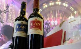 意大利普洛赛克为什么可以是全球内销最高的起泡酒