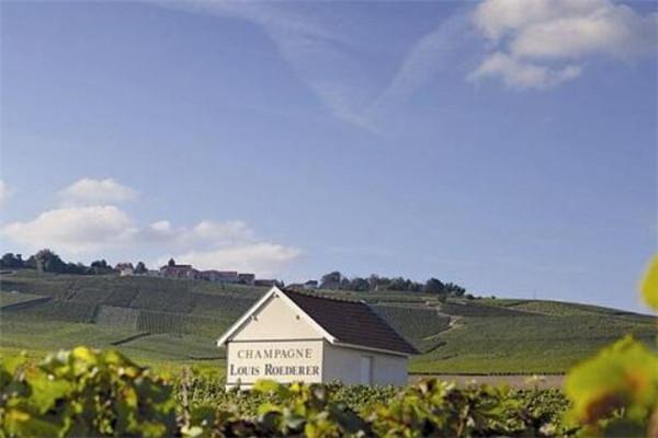 勃艮第产区知名酒庄法维莱酒庄