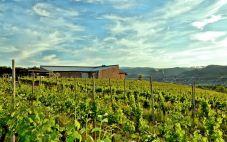 河北沙城家和酒业(Jiahe Winery)