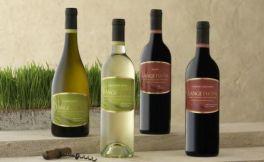总所周知的进口葡萄酒真假辨别方法,能相信吗?