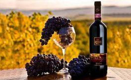 用最简单的方式告诉你意大利葡萄酒分级制度很简单