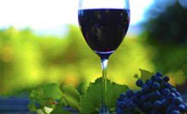 低产量的葡萄就一定能酿好酒了?你相信吗?