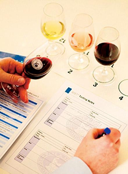 要成为葡萄酒达人需要哪些工具