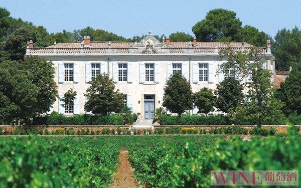 山东:注重葡萄酒酒庄培育跟发展