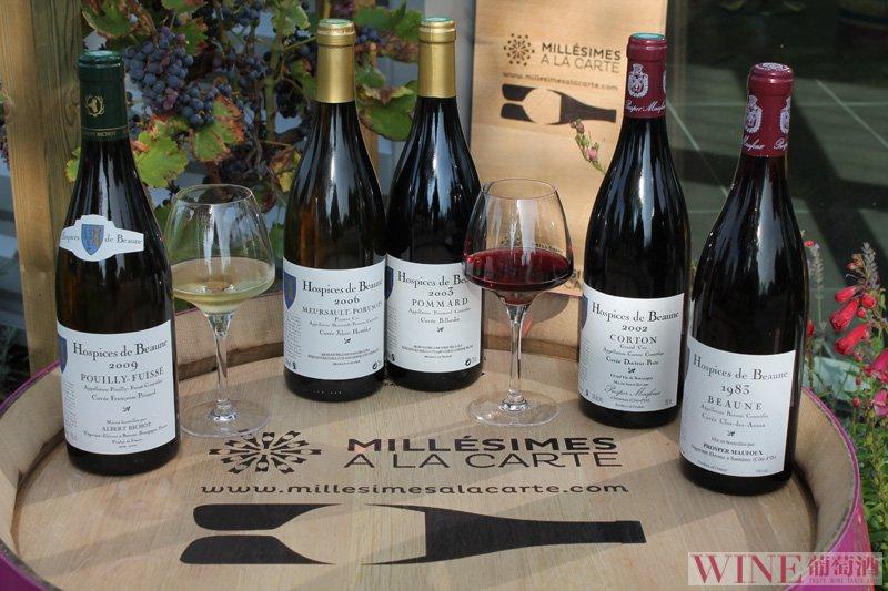怎么样的葡萄酒才是伟大的