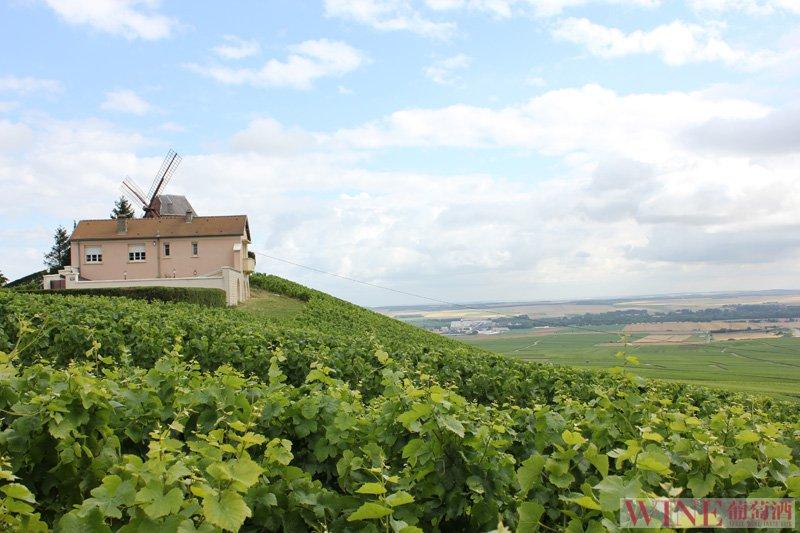 阿尔萨斯最贵的葡萄酒有哪些款式