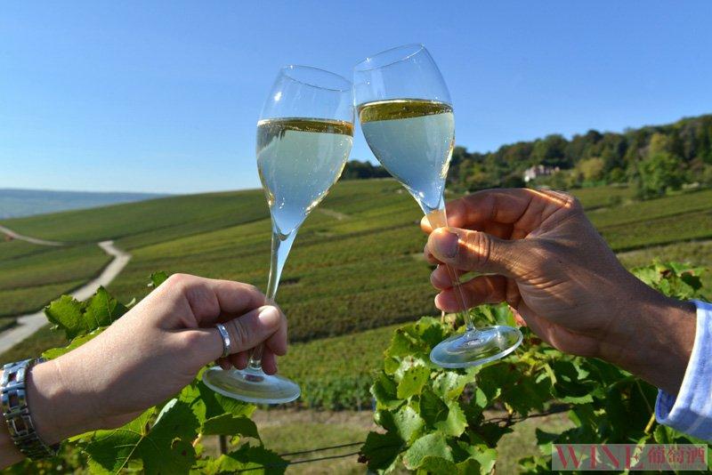 澳大利亚冷凉葡萄酒产区探索  你见识过吗